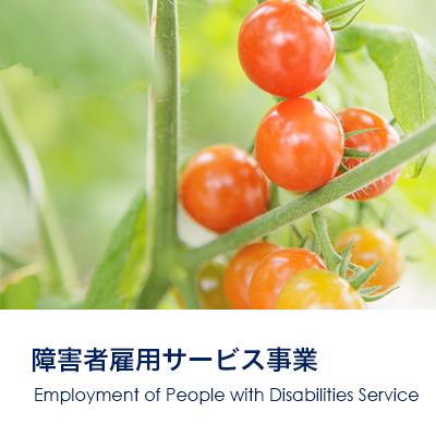 障がい者雇用サービス 大阪 opzt株式会社